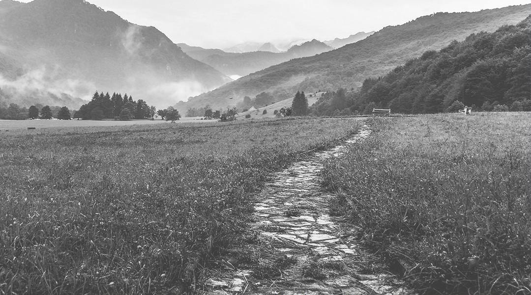 Chemin de campagne (noir-blanc)