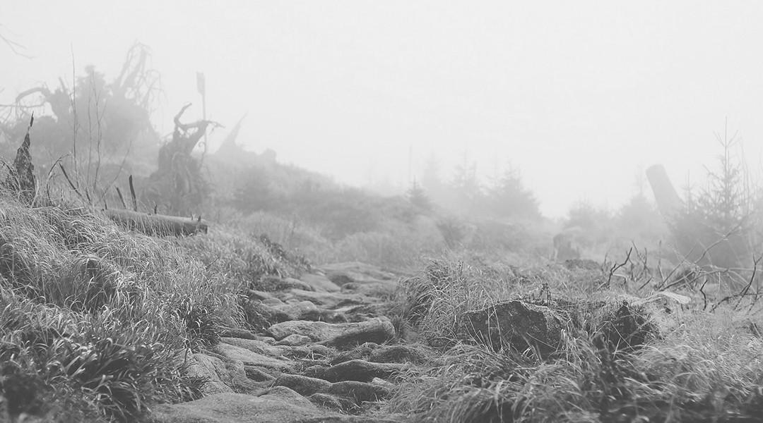 Chemin cailloux (noir-blanc)